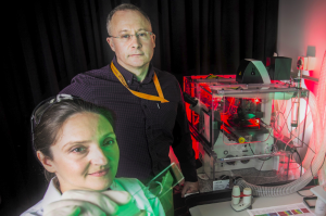 Photograph of MedTech Actuator Menzies Fellow 2021, Associate Professor Jeremy Crook in lab with Dr Eva Tomaskovic-Crook.